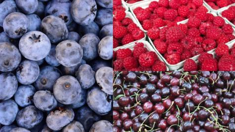 Summer Fruits (1)