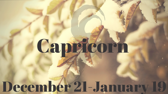 Capricorn blog title 2
